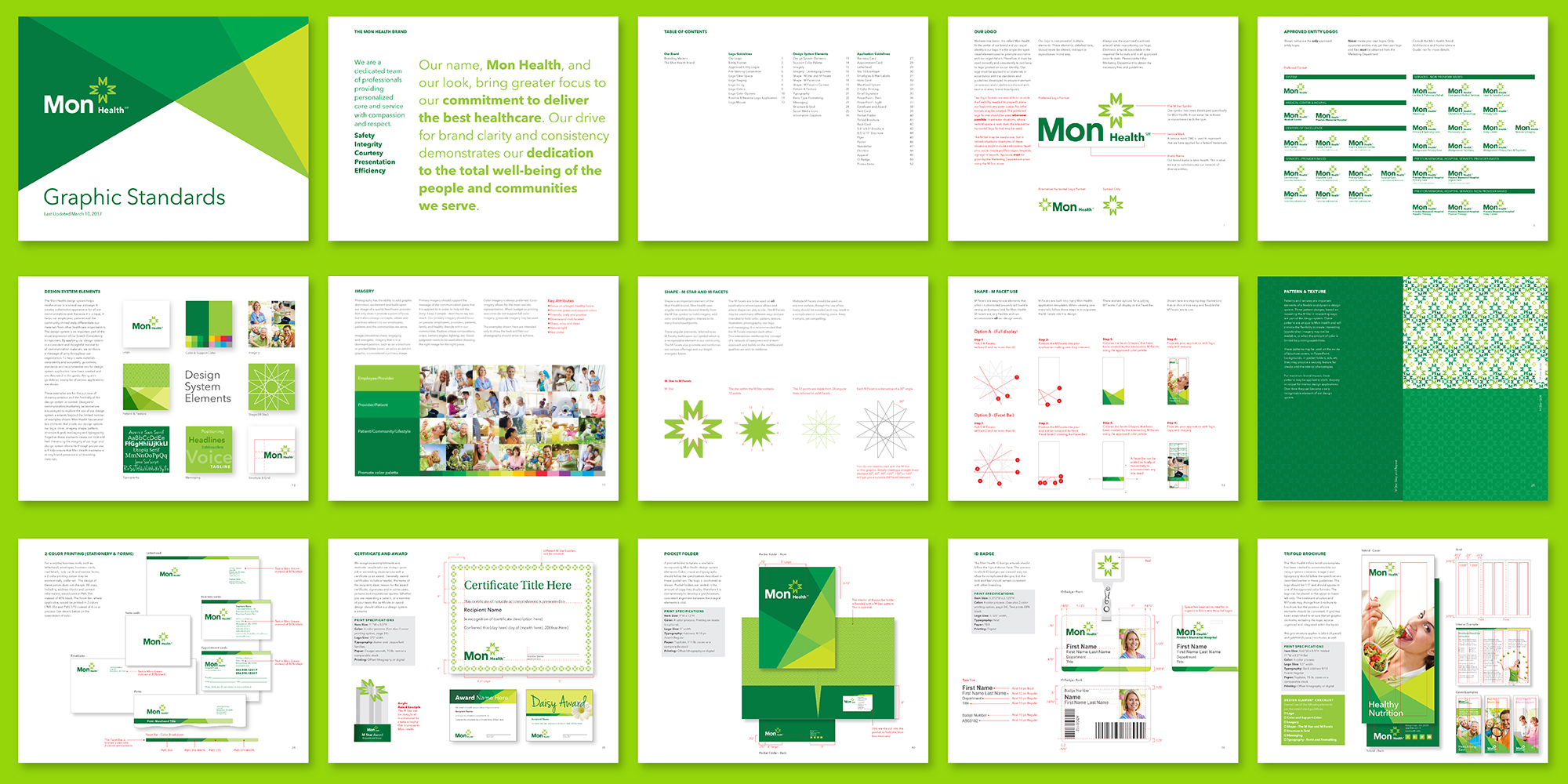 brand guidelines and visual identity system